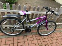 Ladies Mountain Bike- Barnes SW13