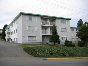 860 Alder Street – Seaview Manor Apartments - 1 BR Campbell River Comox Valley Area image 1