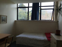 Single room available now in flat share