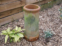 OLD CHIMNEY POT BEEN USED AS PLANTER