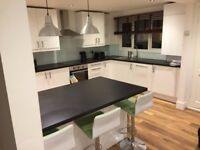Clapham South - 3 bed split level garden flat - 1 min from Clapham south Tube