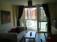 1 Bed Fully Furnised Apartment - Birmingham City Centre