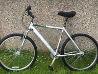 Silver Fox Haste Mountain Bike