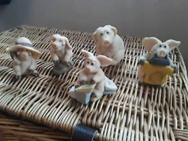 Piggin collectibles