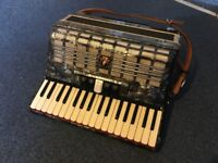 Beautiful Parrot Accordion for sale