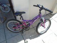 mini mountain bike