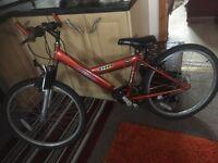 Cyber freespirit 15 gear 24 inch wheel bike