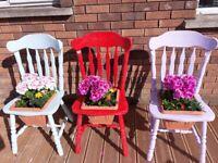 Quirky Garden Planters