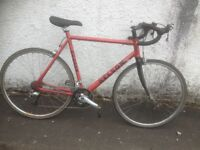 Nelson Road Bike, 24'' Frame. Men's road bike. Fully serviced, fully safe and ready to go.