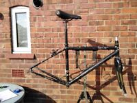 Specialized Sirus hybrid bike 44cm frame carbon / allu