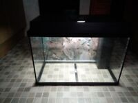 JUWEL REKORD 700 AQUARIUM - complete tropical set fish tank