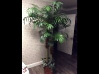 Palm tree artificial