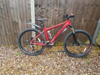 Carrera kraken mens Mountain bike