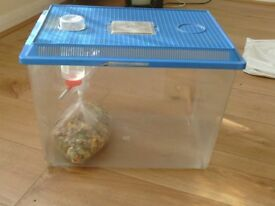 small pet container