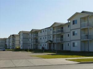 $500 for the First Month - 2 bdrm Units -  Insuite Laundry