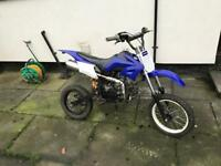 125 Lifan pitbike
