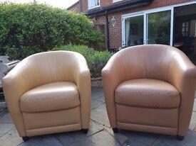 Natuzzi armchairs