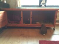Rabbit Hutch - Large
