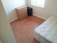 1 King sized Room