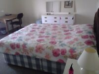 Large Room Fully Furnished only 15' from BU!