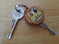 Found two keys in castle road