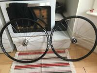 Miche Pistard WR bike wheel + 17 tooth all city fixed cog.