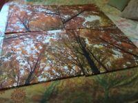 4 piece canvas pictures
