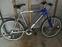 Ammaco Mountaineer Bike, Large Frame