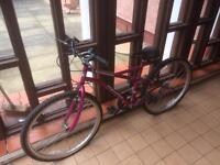 Ladies mountain bike £30