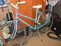 Ladies sports b icycle