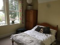 Double Room in Professional House Share available now!