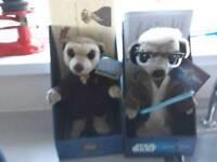 Meerkats for sale 7 in total