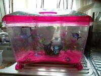 Kiddies starter fish tank