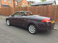 Ford Focus CC-3 2.0 TDi Convertible in Mauve - Cruise Control - Leather Heated Seats - Rear Sensors