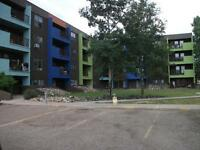 Thickwood Apartments! One Month Free!! $399 deposit!