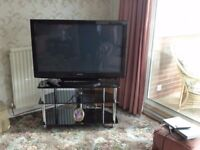 "Panasonic Viera 42"" TV and stand"