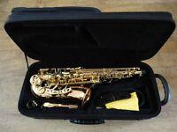 JP Blues 141 Alto Saxophone for Sale