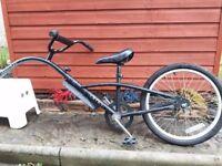 Adventure Ditto Tagalong Trailer Bike