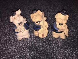 Various pigs for sale