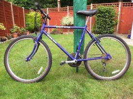 Men's Raleigh Dakota bike for sale