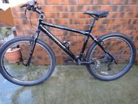 Carrera Mountain Bike in Good Condition (New Tyres)