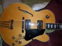 ibanez fg100 jazz guitar,rare,c1981