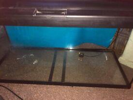 300l fish tank