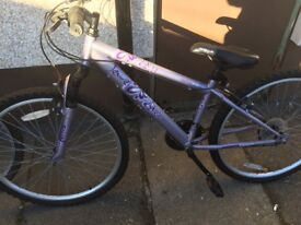 Silver and lilac bike