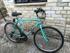 Vintage Raleigh Lizard mtb Terrain Mountain Bike 1980s/90s Retro
