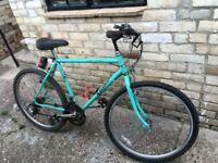 Vintage Raleigh Lizard mtb Terrain Mountain Bike 1980s/90s Retro