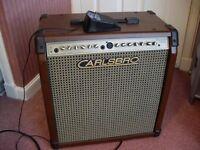 Carlsbro Sherwood Classic 100W Acoustic Guitar Amplifier