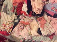 Massive bundle girls clothes newborn - 9 months excellent condition