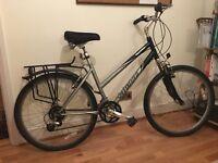 Specialized Expedition Hybrid Bike