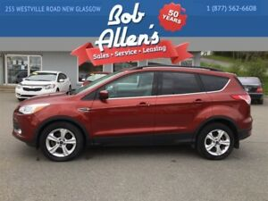 2014 Ford Escape SE 2WD